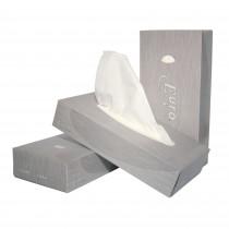 Facial Tissues Euro ECO 21 x 21 cm, 2-laags (doos 40 x 100 stuks)