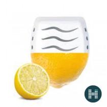 Vendor Everfresh Geurstrips | Breeze of Lemon (doos 30 geurstrips)